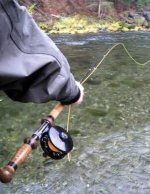 Salmon Bait & Spin Angler